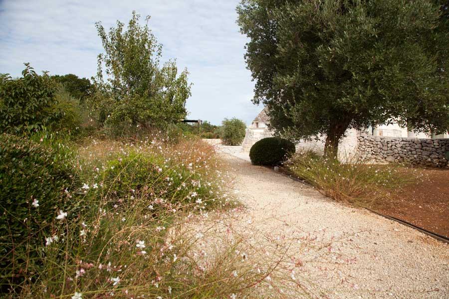 Giardino Villa Trulli Piscina Ostuni