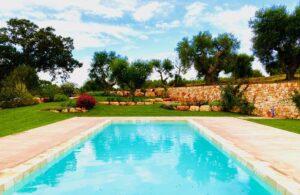 Giardino con piscina e ulivi villa Cisternino #10
