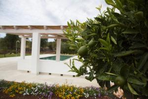 Giardino Villa con Piscina e limoni Ostuni #2