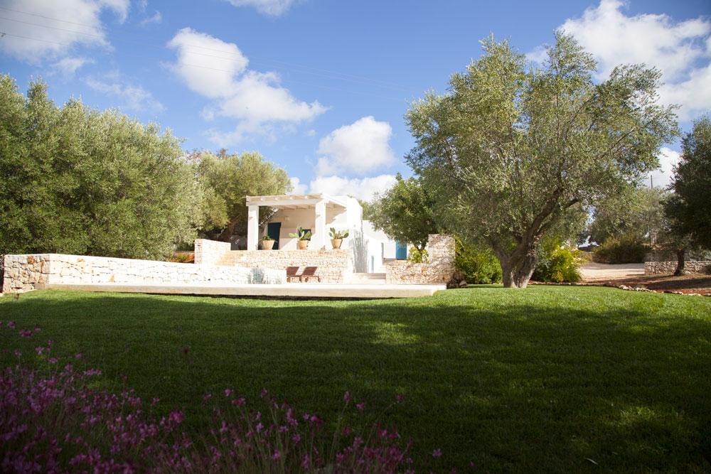 Progettazione Giardino Villa Piscina Ulivi Ostuni #3
