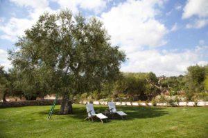 Garden Design in Puglia