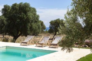 Giardino Piscina Villa Carovigno #7