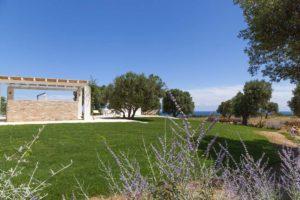 Giardino con ulivi e prato Villa Carovigno #7