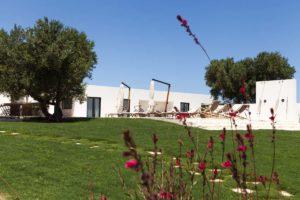 Giardino prato Villa Carovigno #7