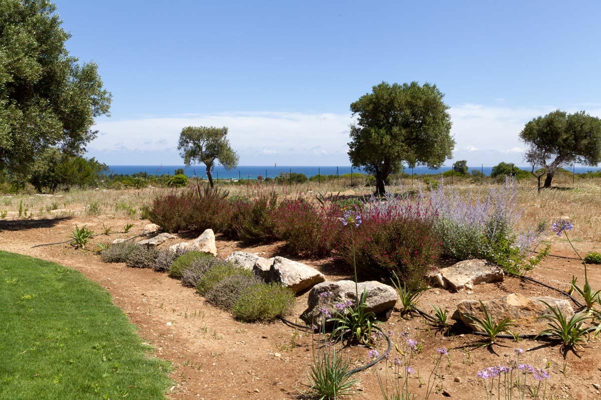 Giardino mediterraneo Ceglie Messapica #7