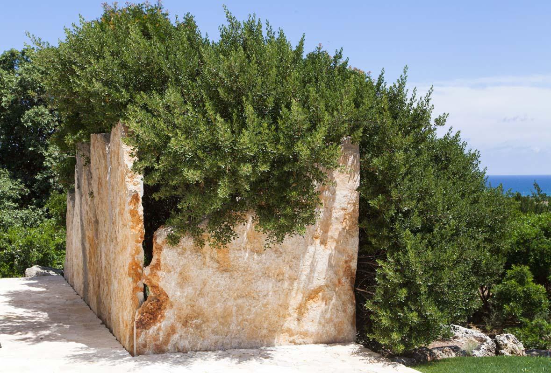 Piante mediterranee Villa Ceglie Messapica #7