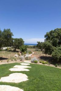 Creazione Verde Villa Ceglie Messapica #7