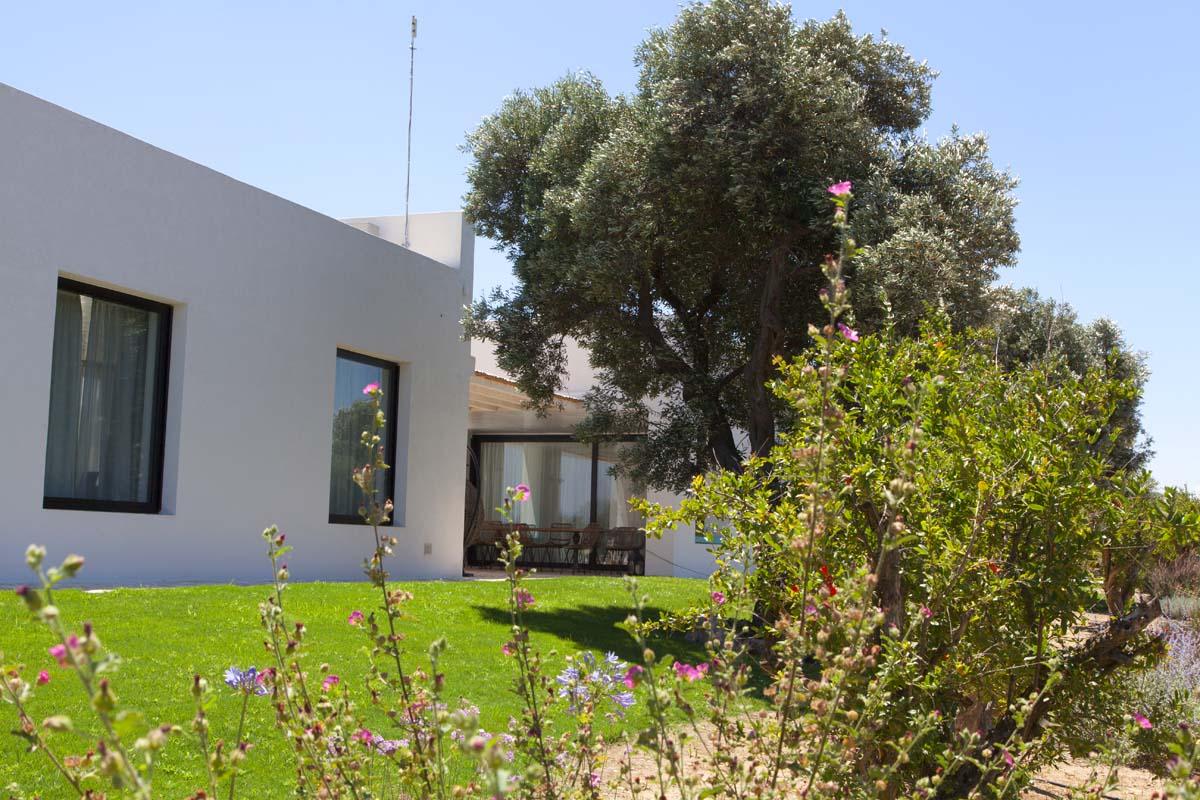 Dettaglio Verde Villa Ceglie Messapica #7