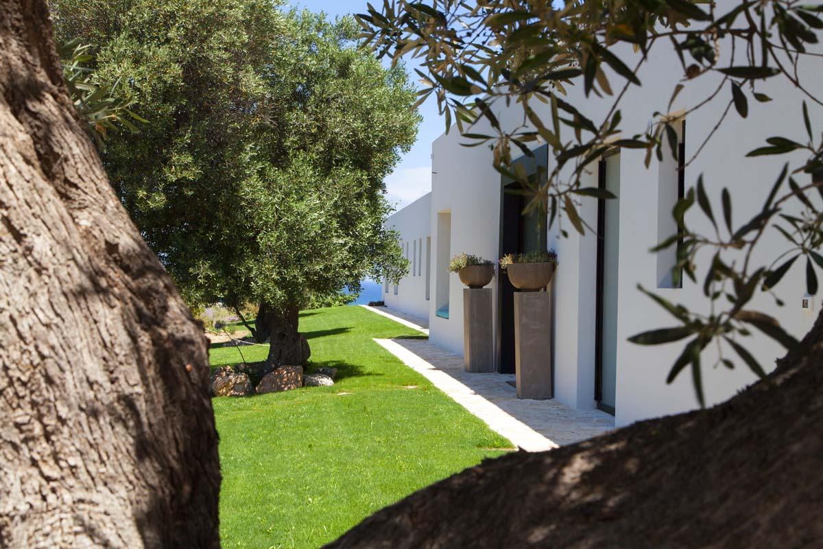 Progetto esterni villa Ceglie Messapica #7
