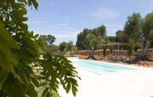 Progettazione Giardini con piscina Ostuni #8
