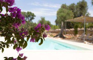 Giardino piscina villa Ostuni Brindisi #8