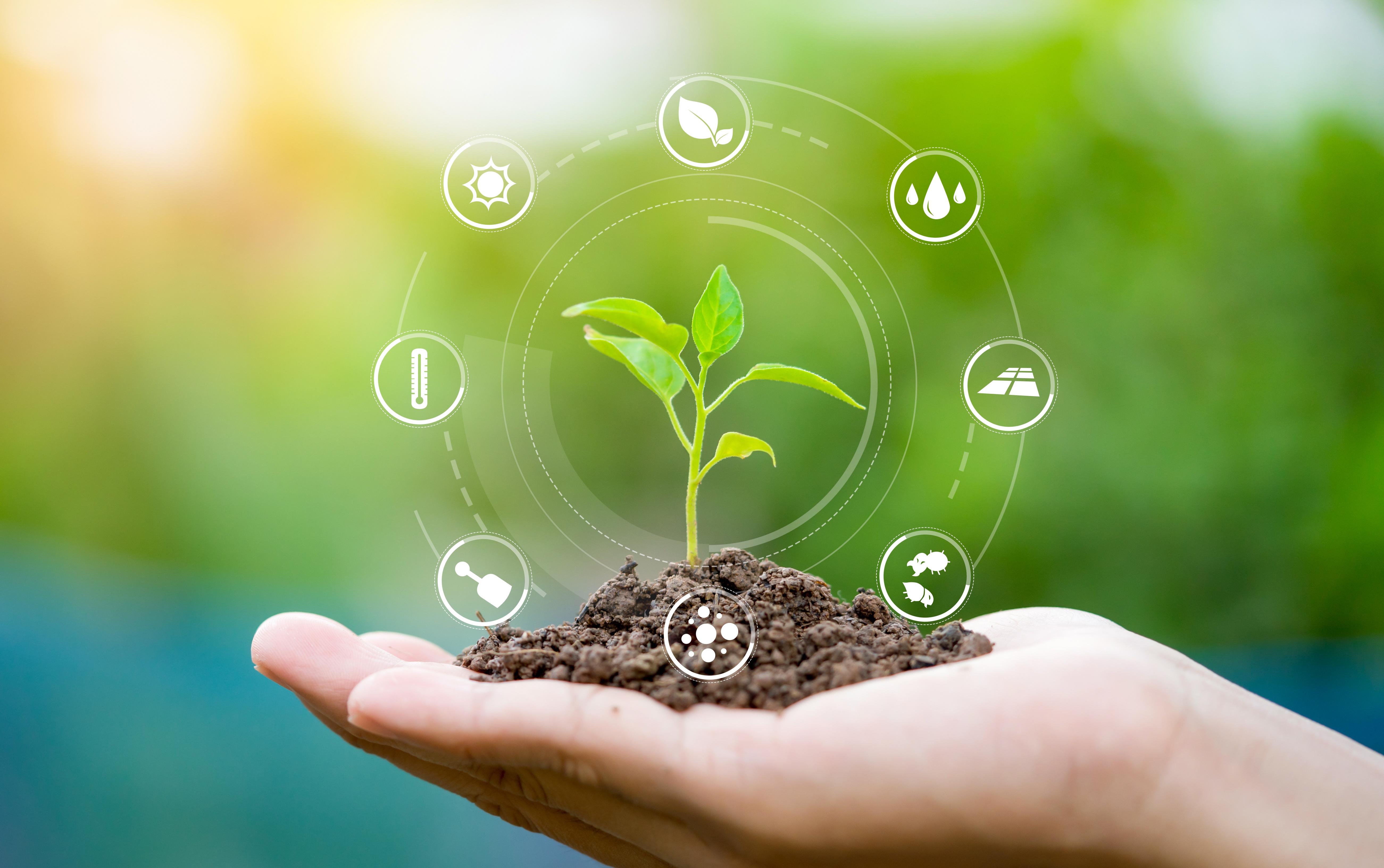 Giardino biosostenibile