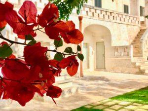 Esterni Giardino antica masseria Ostuni #9
