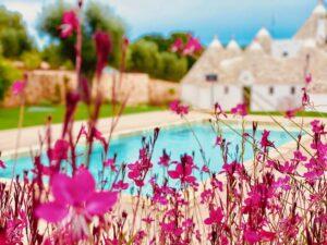 Giardino mediterraneo ulivi piscina villa Cisternino #10
