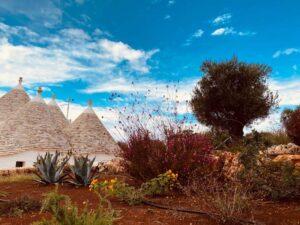 Giardino con trulli e ulivi villa Cisternino #10